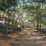 Estação Ecológica do Pau-Brasil