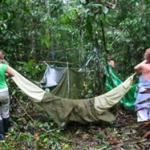 camping amazonas