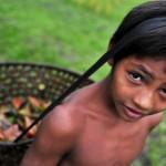 floresta_amazonica índios