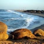 Praia Pedra do Sal