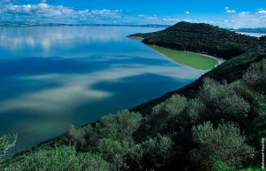 parque nacional ichkerul