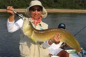 pesca em aruanã
