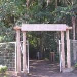 Bosque dos Pioneiros