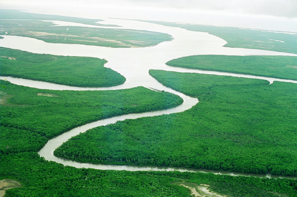 Foto de um rio do Pantanal