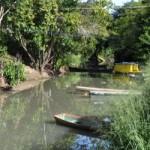 Igarapé Água Boa