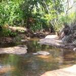 Reserva Ecológica do Lajeado