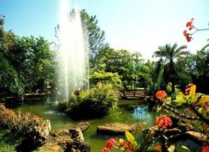 jardim-japones-caldas-novas