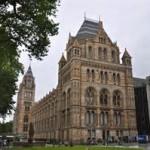 Museu de História Natural de Leiden