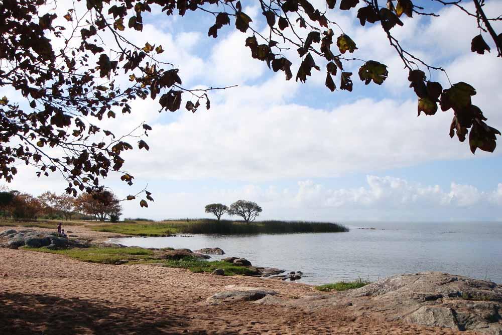 Praia Barrinha (Foto: Reprodução)