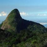 Parque Nacional da Tijuca e Floresta da Tijuca