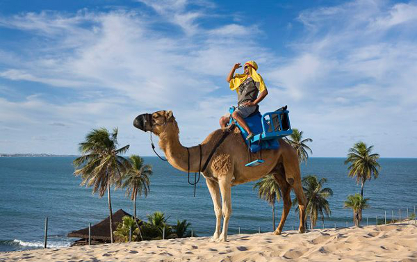 A Praia do Genipabu possui camelos como atração, para quem deseja fazer belas fotografias.