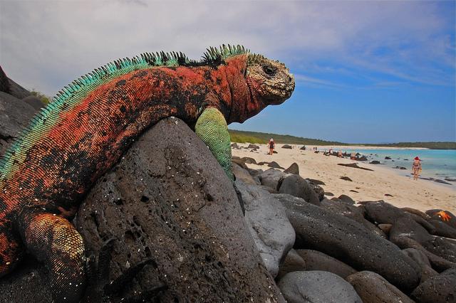 Pontos turísticos de Galápagos
